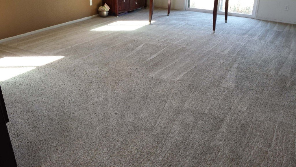 Dirty Carpet After Cleaning