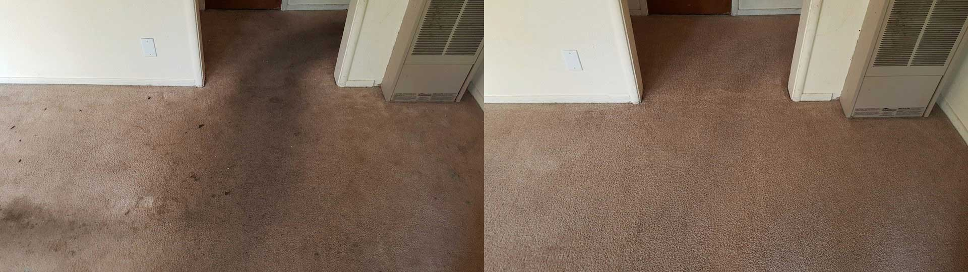 carpet cleaning South Natomas CA