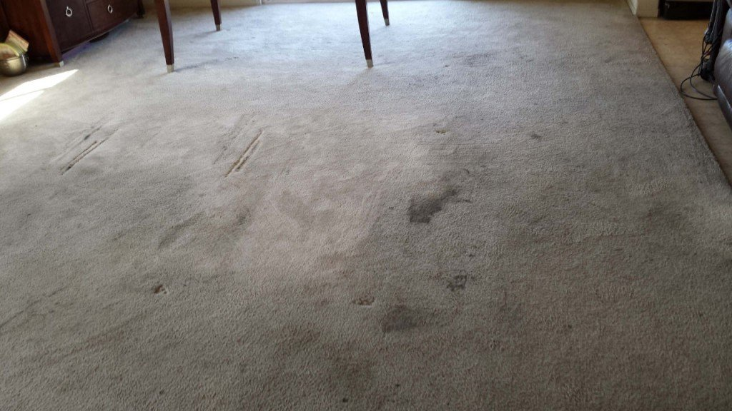 Dirty Carpet Before Cleaning