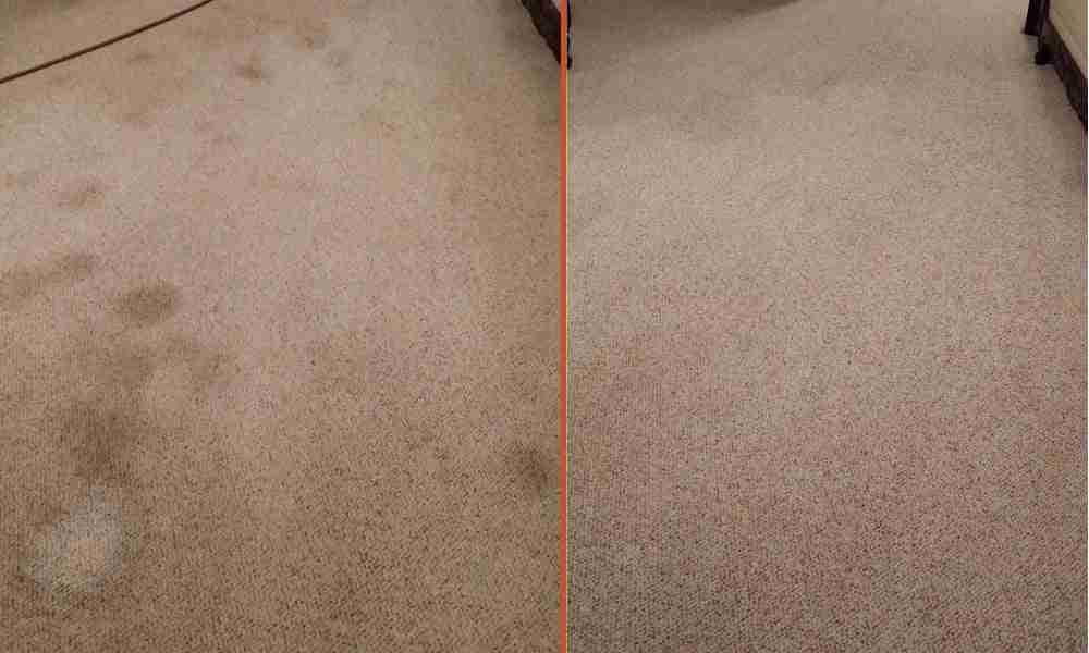 commercial carpet cleaning carmichael