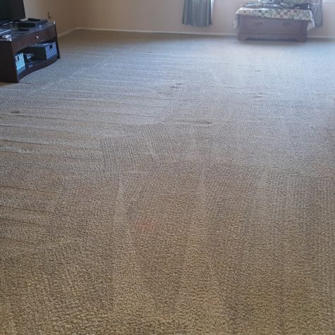 carpet cleaning after 4