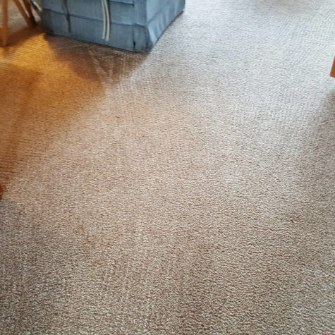 carpet cleaning after 5